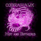 Cobrahawk: Hot And Bothered