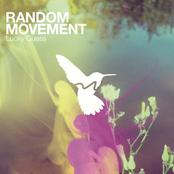 Random Movement - Bandaids