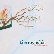 Tim Reynolds: The Limbic System