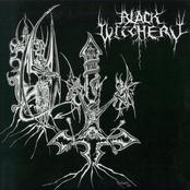 Black Witchery / Katharsis split 7