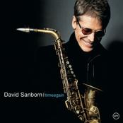 David Sanborn: Time Again