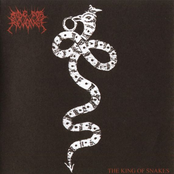 The King of Snakes LP
