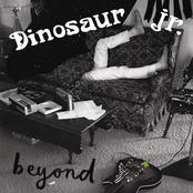 Dinosaur Jr.: Beyond