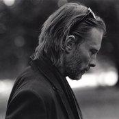 Avatar for Thom Yorke