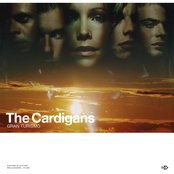 My Favourite Game by The Cardigans