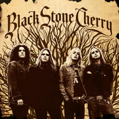 Thumbnail for Black Stone Cherry