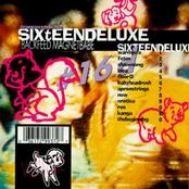 Sixteen Deluxe: Backfeed Magnetbabe