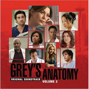 Grey's Anatomy Volume 2