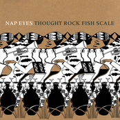 Nap Eyes: Thought Rock Fish Scale