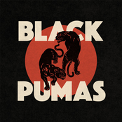 Black Pumas Colors Radio G! Angers