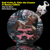 After the Storm (feat. Tyler, The Creator & Bootsy Collins) [Pete Rock Remix] - Single