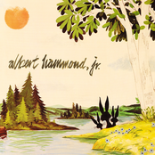 Albert Hammond Jr: Yours To Keep