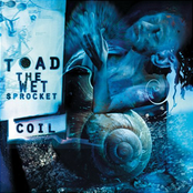 Toad The Wet Sprocket: COIL