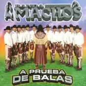 Banda Machos: A Prueba de Balas