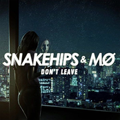 Snakehips: Don't Leave