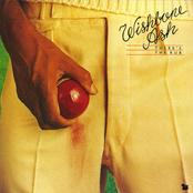 Wishbone Ash: There's The Rub