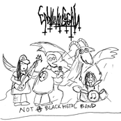 Not A Black Metal Band
