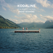 In a Perfect World (Radio Sessions)