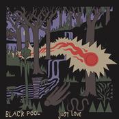 Black Pool: Just Love