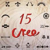 15 Cree