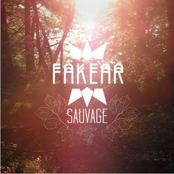Fakear: Sauvage