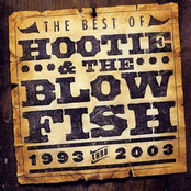 Hootie & The Blowfish: The Best of Hootie & The Blowfish (1993-2003)