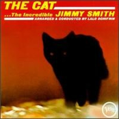 The Cat & Other Great Themes