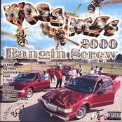 Bangin Screw 2000