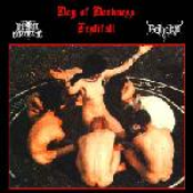 Day Of Darkness Festifall (Split Bootleg)