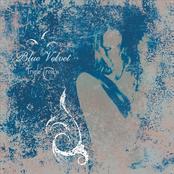 Blue Velvet: Triple Crown