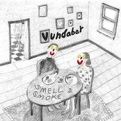 Album cover of Smell Smoke, by Vundabar