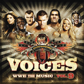 Voices: WWE the Music, Vol. 9