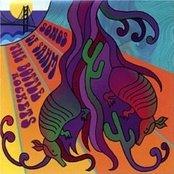 The Bottle Rockets - Songs Of Sahm Artwork
