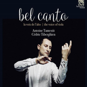 Antoine Tamestit: Bel Canto: The Voice of the Viola