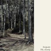 Bogues: Life, Slowly