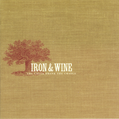 Iron and Wine: The Creek Drank the Cradle