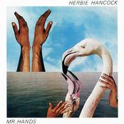 MR. HANDS