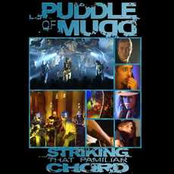 Puddle Of Mudd: Striking a Familiar Chord