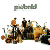 Piebald: We Are the Only Friends We Have