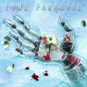 K?D: Find Paradise