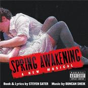 Duncan Sheik: Spring Awakening