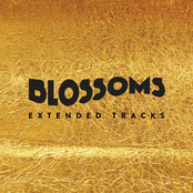 Blossoms (Extended Tracks)