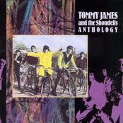 Tommy James: Tommy James And The Shondells: Anthology