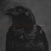 Far From Home (The Raven)