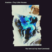 You Tore Out My Heart (Anatole Remix)