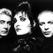 Siouxsie and the Banshees 22fc9f8883744d289c9ecdb48c950693