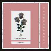 Autograf: You Might Be (feat. Lils) [Remixes]