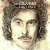Andres Calamaro: El Cantante