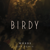 Words (EDX Remix)