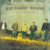 Big Daddy Weave: Fields of Grace